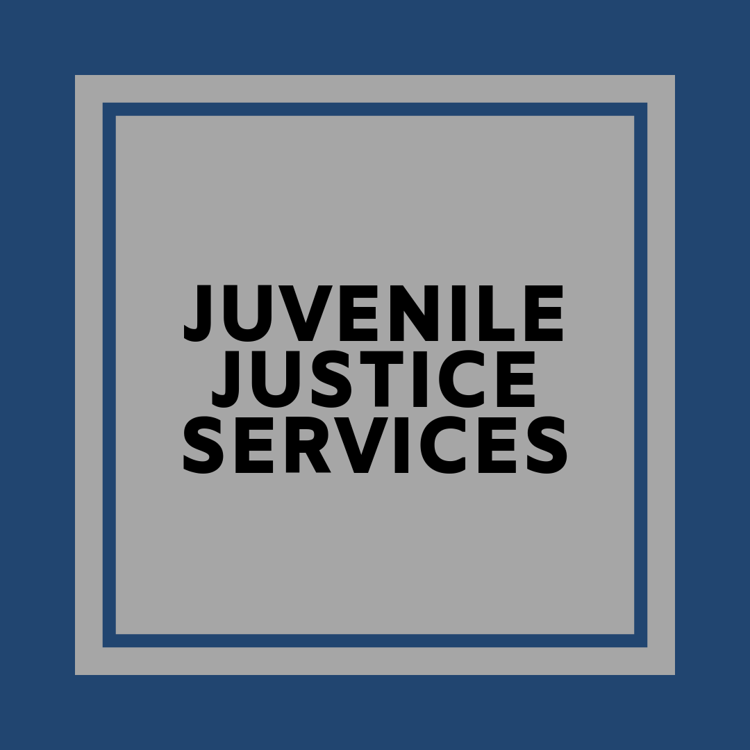 Juvenile Justice Services Badge